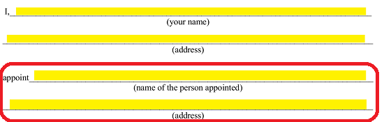 here enter the legal name and address of the principal approved attorney in fact on the blank lines labeled name of person appointed and address