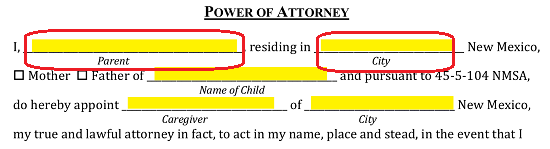 temporary medical power of attorney for child