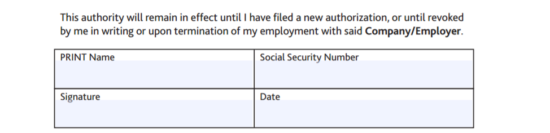 Free BB&T Direct Deposit Authorization Form - PDF   eForms – Free ...